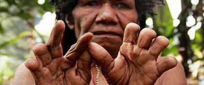 ritual ikipalin wamena papua