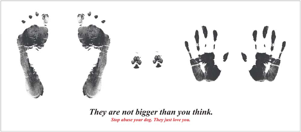 Animal abuse posters - photo#25