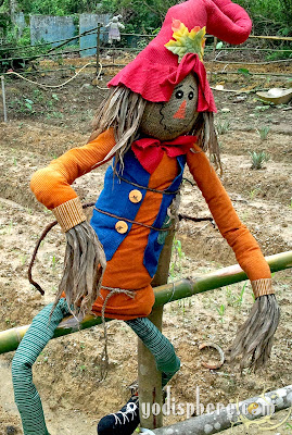 Smiling colorful scarecrow sitting on fence