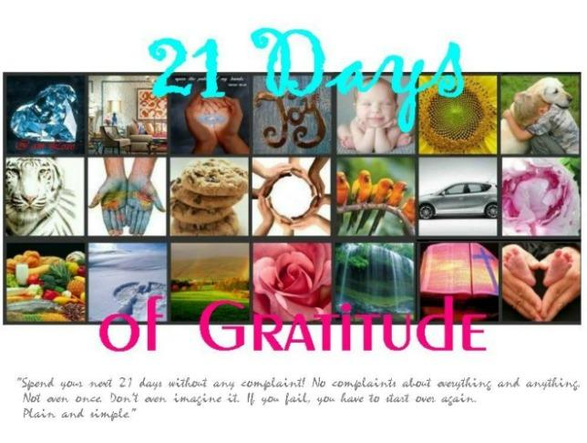 Our 21 Days of Gratitude