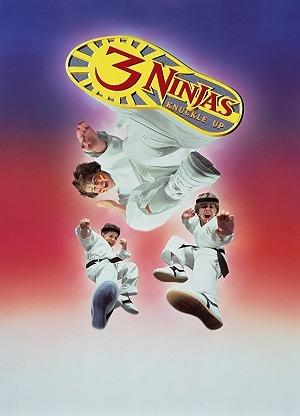 3 Ninjas em Apuros Filmes Torrent Download capa