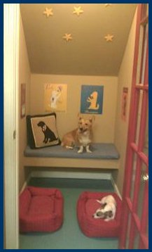 Mad about pets september 2011 for Pet bedroom ideas