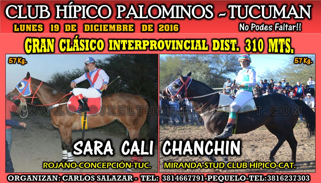 19-12-16-HIP. PALOMINOS-CLAS.