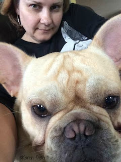 cream french bulldog selfie with owner photo bombing in the background close up face nose wrinkles