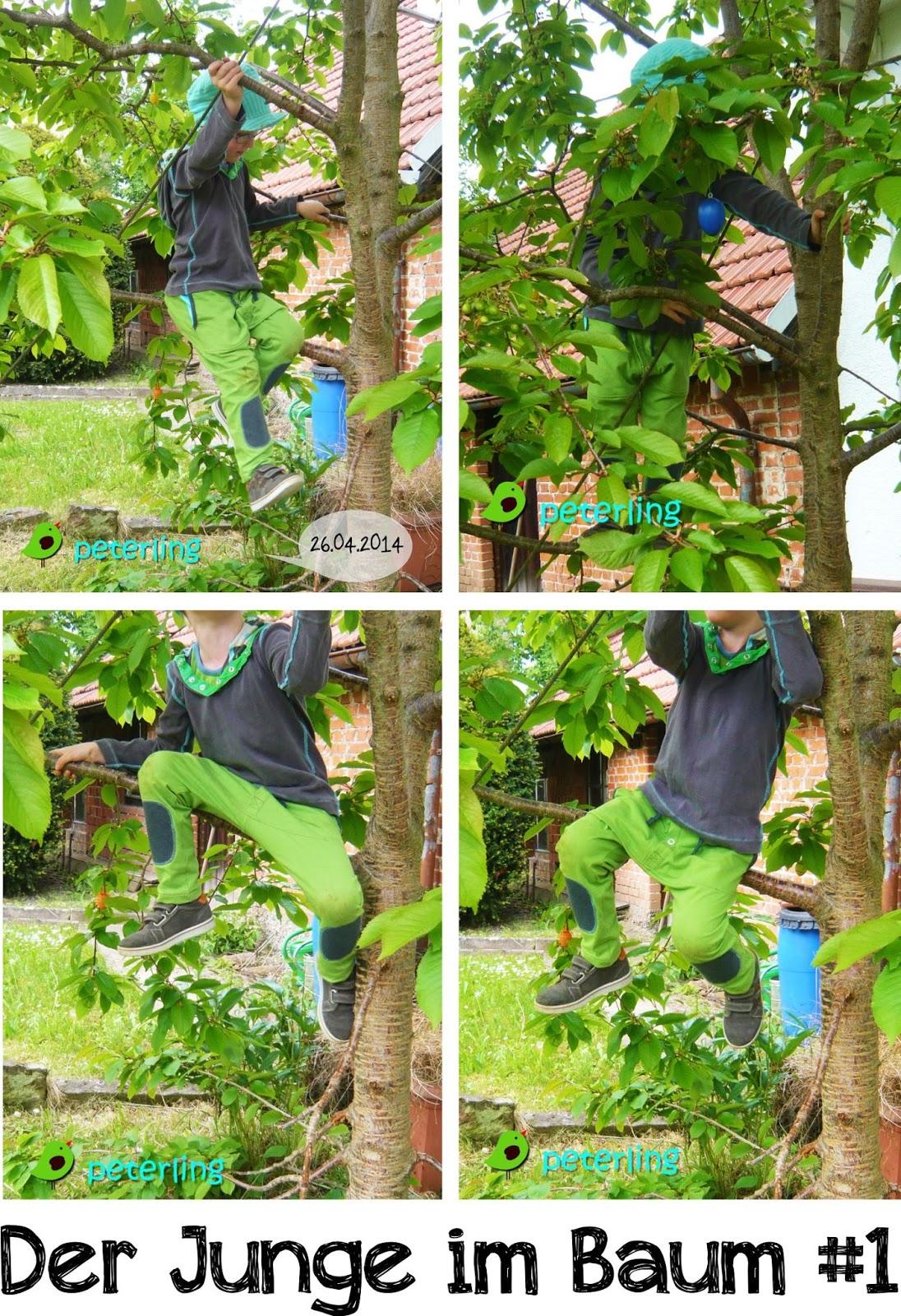 Der Junge im Baum #1