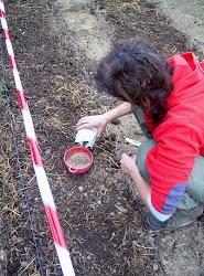 Taller sobre los bancales y la siembra
