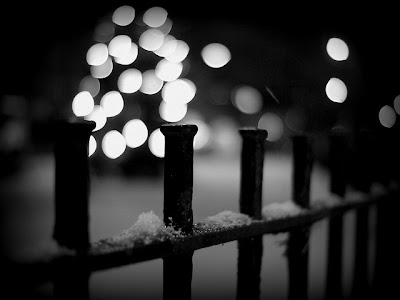Snow Photography