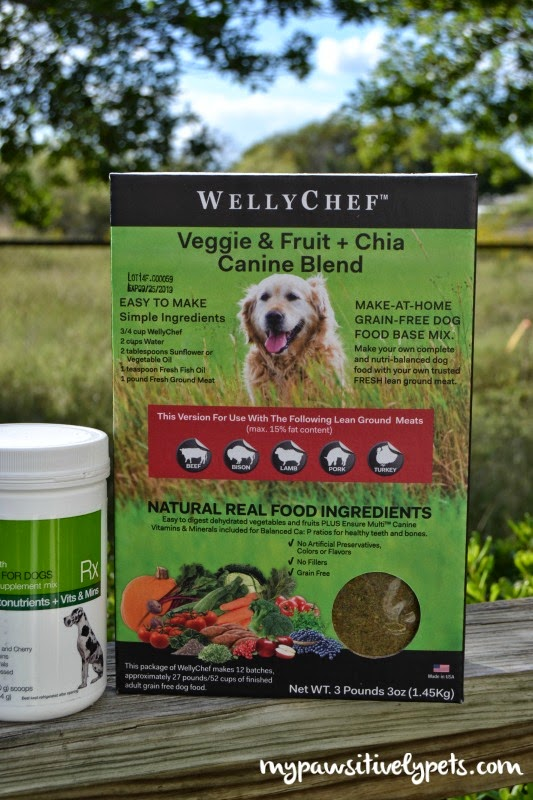 How a fish oil supplement helped my dog 39 s skin and coat for Raw fish for dogs