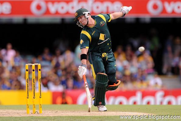 Australian Cricketer David Warner - 34.8KB