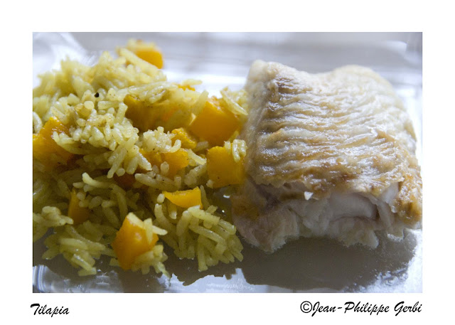 image of Farm raised tilapia recipe