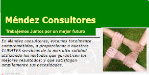MENDEZ CONSULTORES