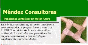 MENDEZ CONSULTORES