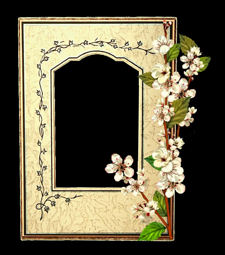 Invitaciones para primera comunión y tarjetas de