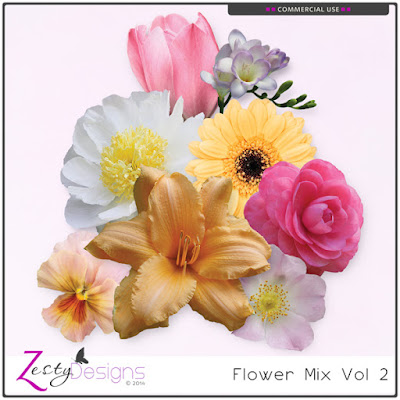 http://www.digitalscrapbookingstudio.com/commercial-use/elements/cu-flower-mix-vol-2/