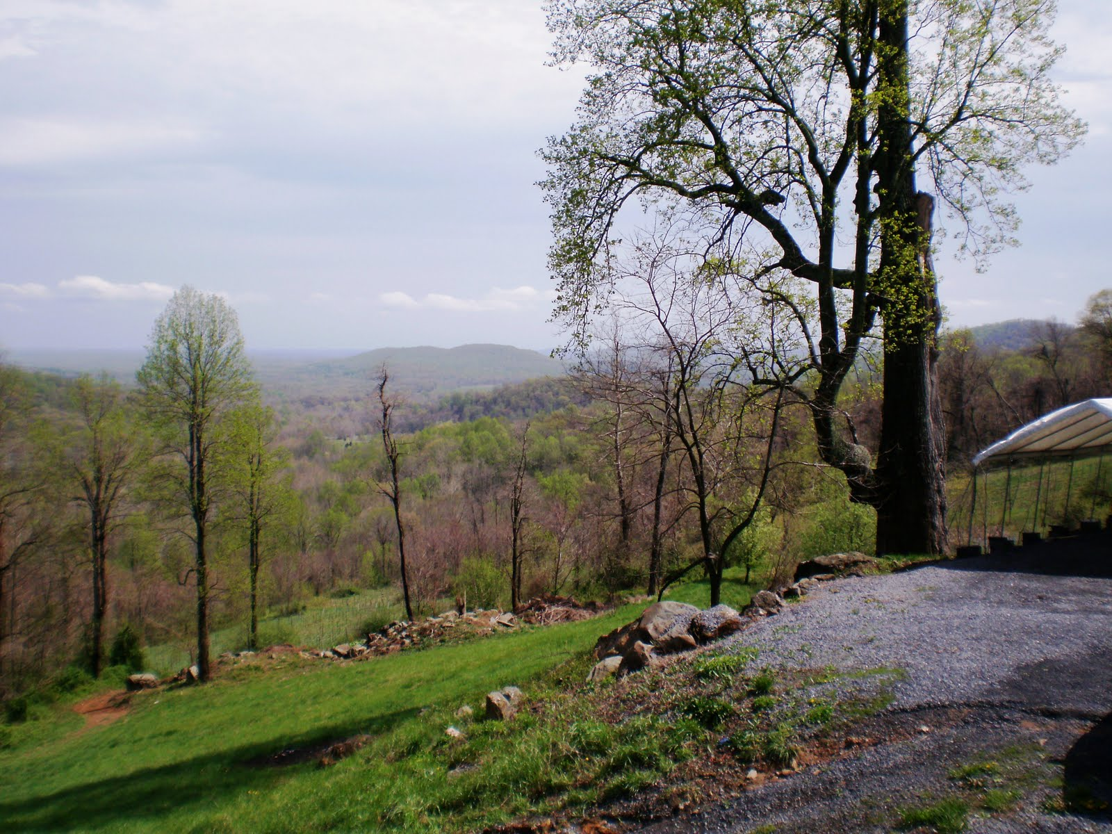 Chester Gap only had four wines available for tasting that day. Tastings are still $7 though which puzzled us a bit. But they do waive one tasting fee for ... & Chester Gap Cellars | Wine About Virginia