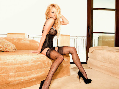 pamela anderson sexy lingerie nude stockings pambition.com 01 10 Super Sexy Pamela Anderson Lingerie Wallpapers [1600x1200]