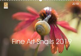 Fine Art Snail 2019 Kalender !!!