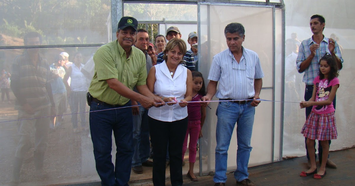 Noti mag productores de nandayure incrementan ingresos for Viveros escalante