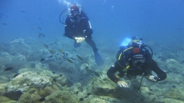 Buceo en La Herradura con Aqualia