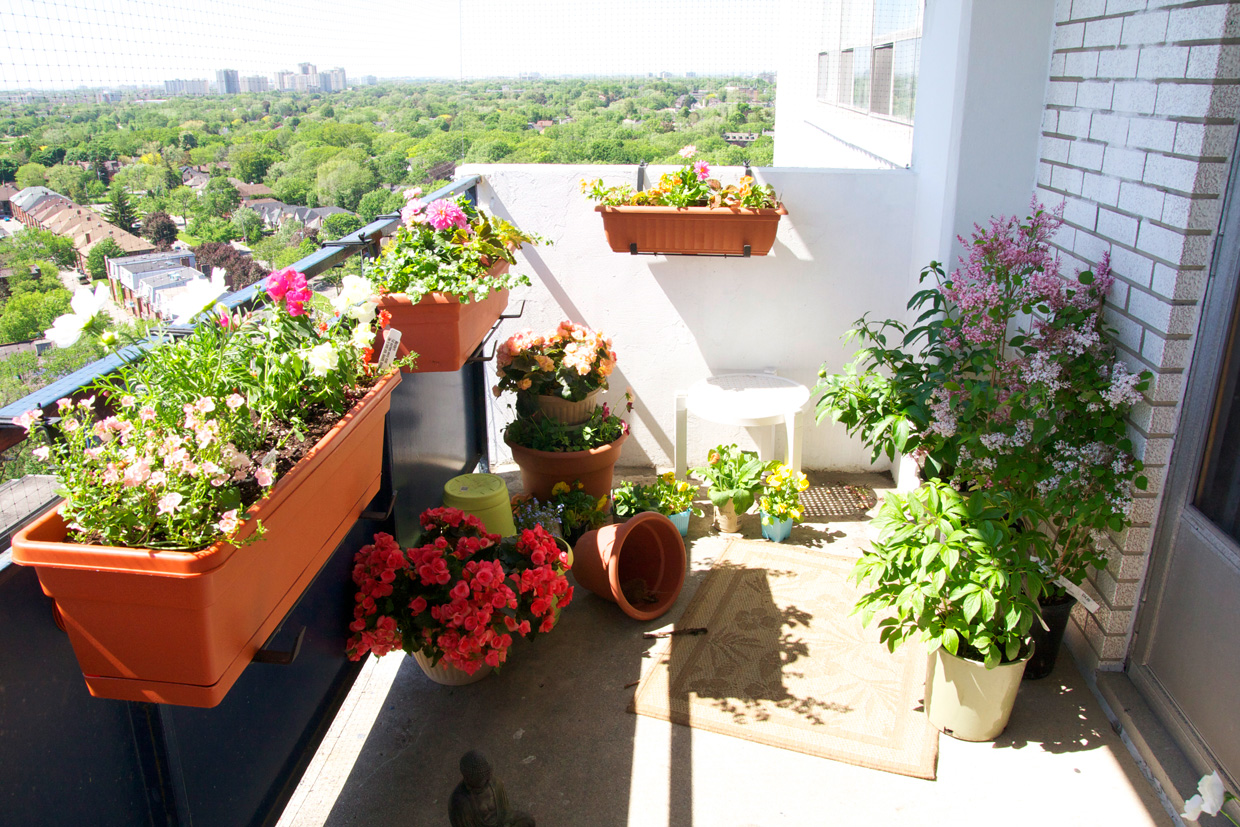 Tiny Apartment Garden: Maison de charme bonadies nashville.