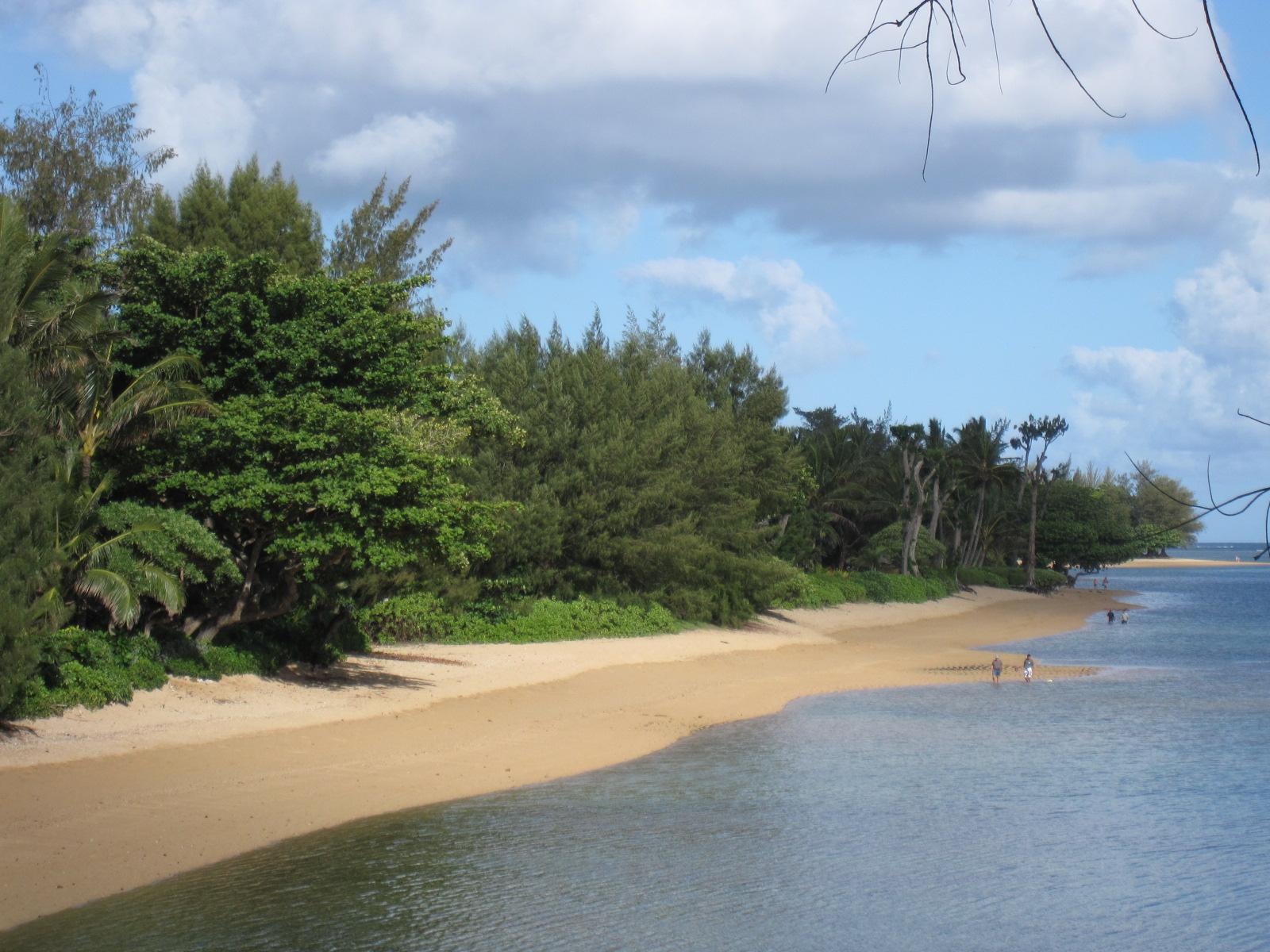 kauai real estate for sale kauai real estate anini
