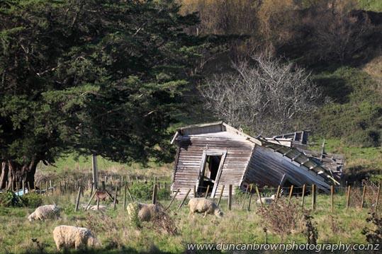 Ain't gonna need this house no longer - Mahia Ave, Wairoa photograph