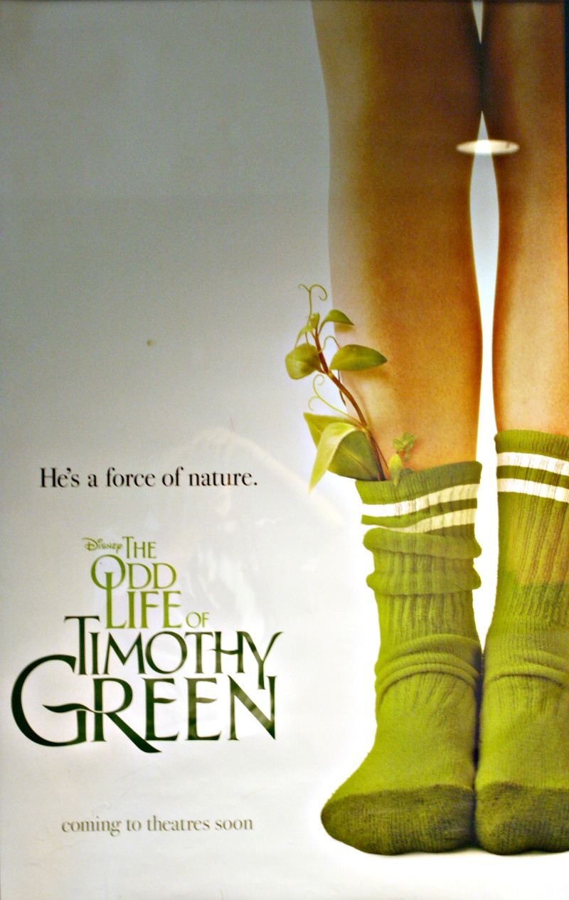summary of the odd life of Read the movie synopsis of the odd life of timothy green to learn about the film details and plot filmjabber is your source for film and movies.