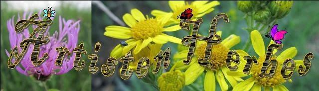 Artiste en Herbes