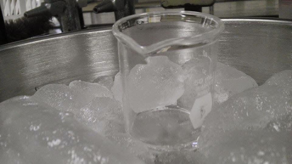 Baño De Tina Con Hielo:En un cuarto vaso tendremos 75 ml de agua helada con 20g de hielo, Se