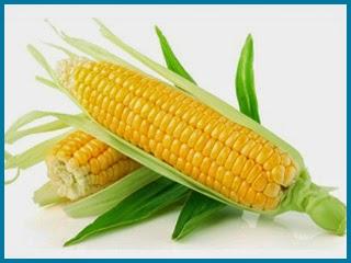 ekstrak jagung terkandung dlama advance joint health -shaklee