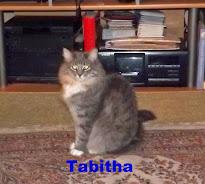 Lady Tabitha