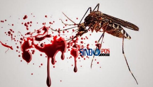 Endemik Demam Berdarah
