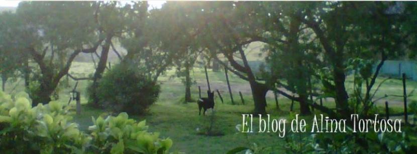 El blog de Alina Tortosa