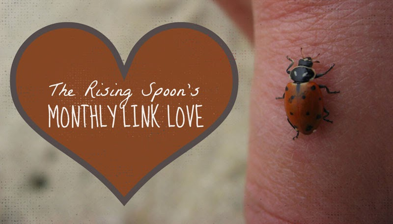 Monthly Link Love: May 2014 Edition | therisingspoon.com