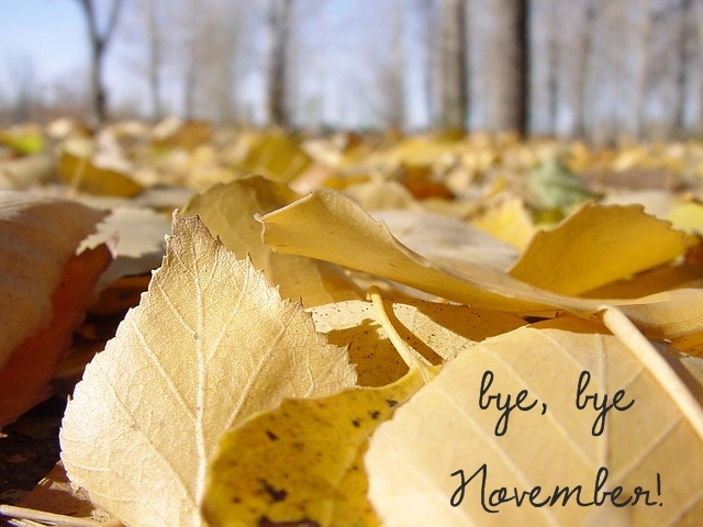 Bye, bye November!