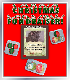 Christmas Fundraiser!