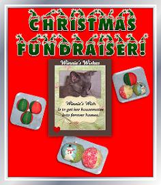 Christmas Fundraiser!