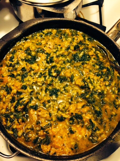 Daisys doggie stew homemade dog food one brown mom ground turkey spinach and pumpkin forumfinder Images