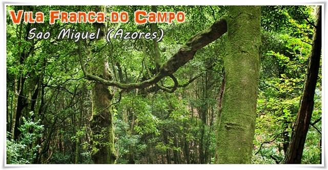Vila-Franca-do-Campo-Sao-Miguel-Azores