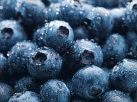 Healthy Head of Hair - Blueberries