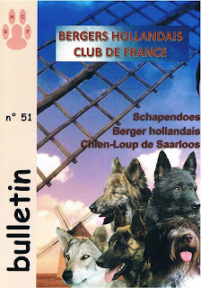 revue Berger Hollandais Club de France