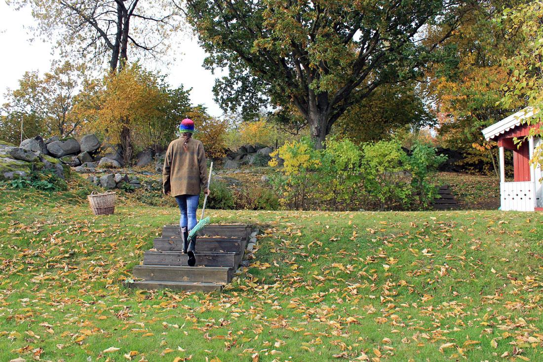 Io e le foglie :-)