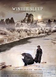 poster phim Ngủ đông