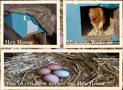 Get To Know The Hen House.