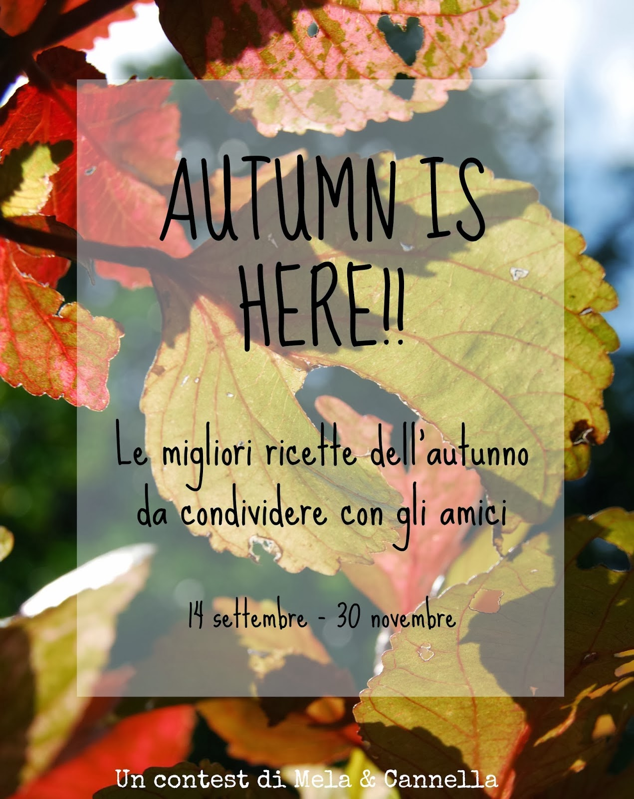"Contest ""Autumn is here"""
