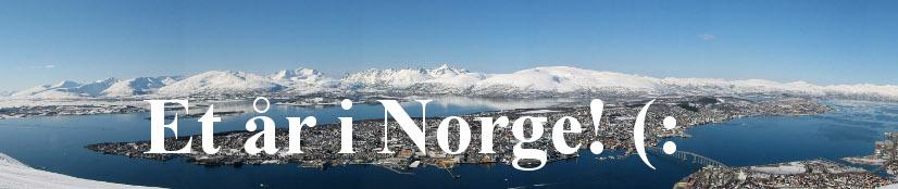 Ett år i Norge