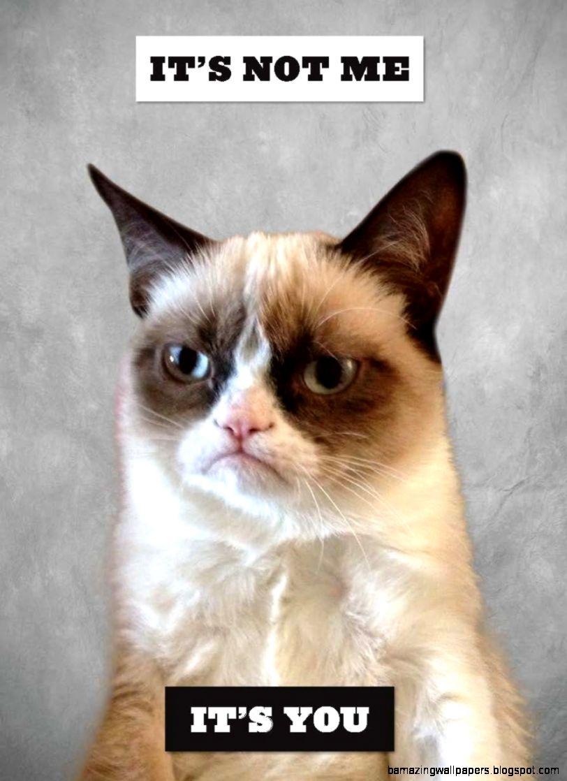 Grumpy Cat A Grumpy Book Grumpy Cat 9781452126579
