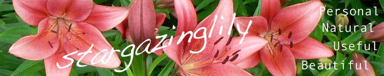 Stargazinglily