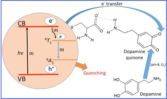Dopamine Detection System