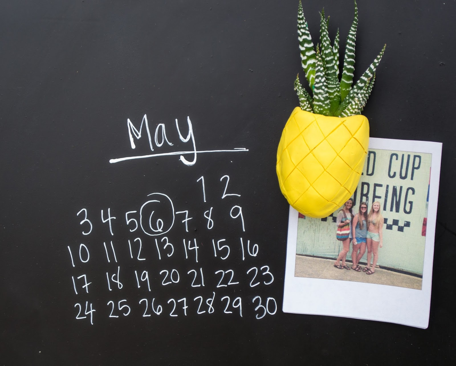 DIY Magnetic Pineapple Succulent Planters